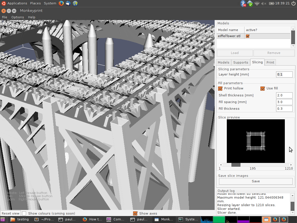 Screenshot of an Eiffel tower model sliced by the Monkeyprint DLP software. Lots of small details are visible in the resulting slice image.